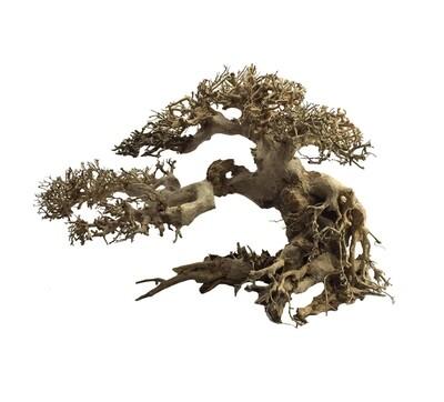 ADA bonsai Wood