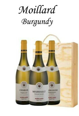 Moillard Burgundy x 3 Bottle