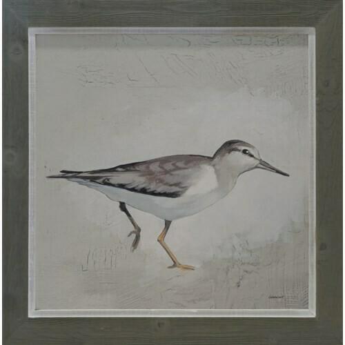 Bird 30x30