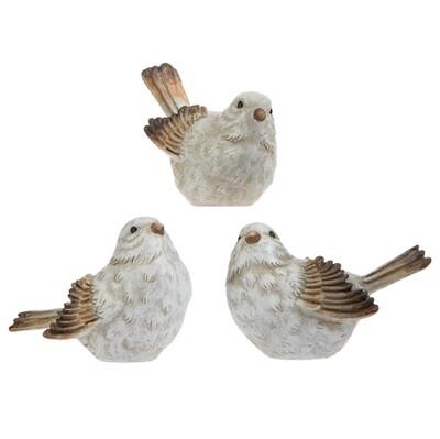 Bird R