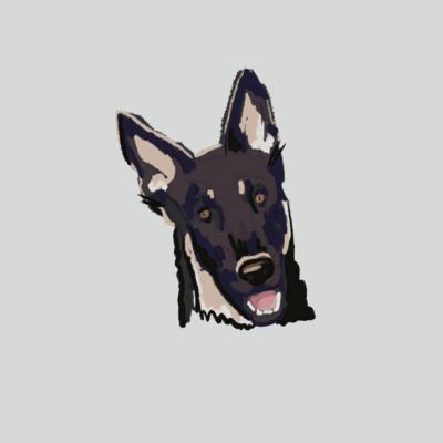 Digital Dog Portrait