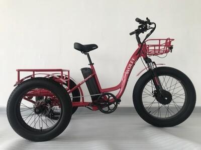Wolff Tucana Trike