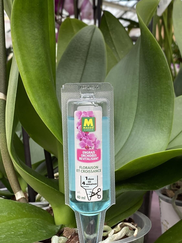 Engrais orchidées en pipette 40 ml