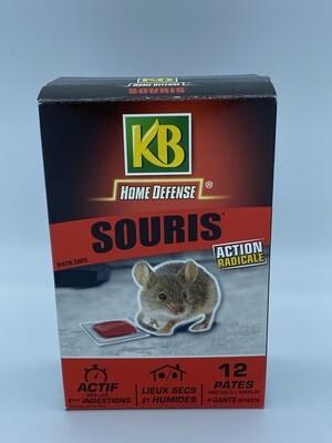 Anti souris action radicale KB
