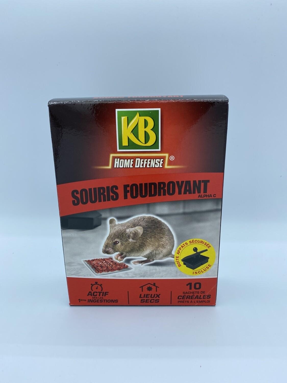 Anti souris Foudroyant KB