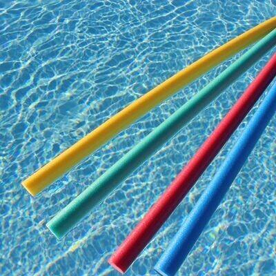 Frite de natation