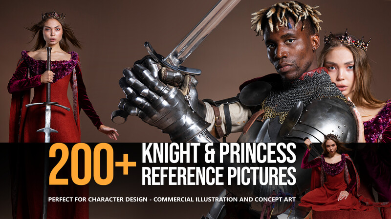 200+ Knight and Princess Reference Pictures for Artists