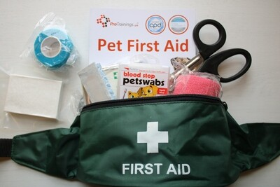 Canine First Aid Kit