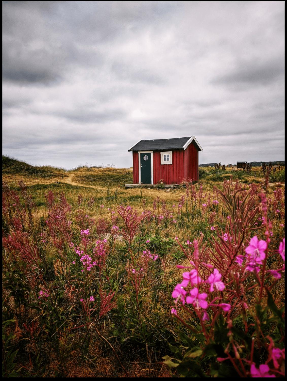 Poster - Skane Rote Fischerhütte