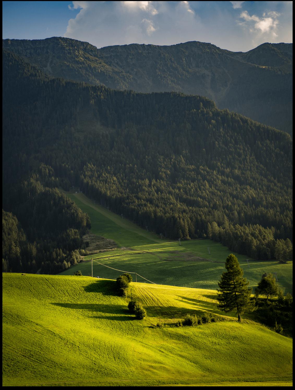 Poster - Südtirol Wiese
