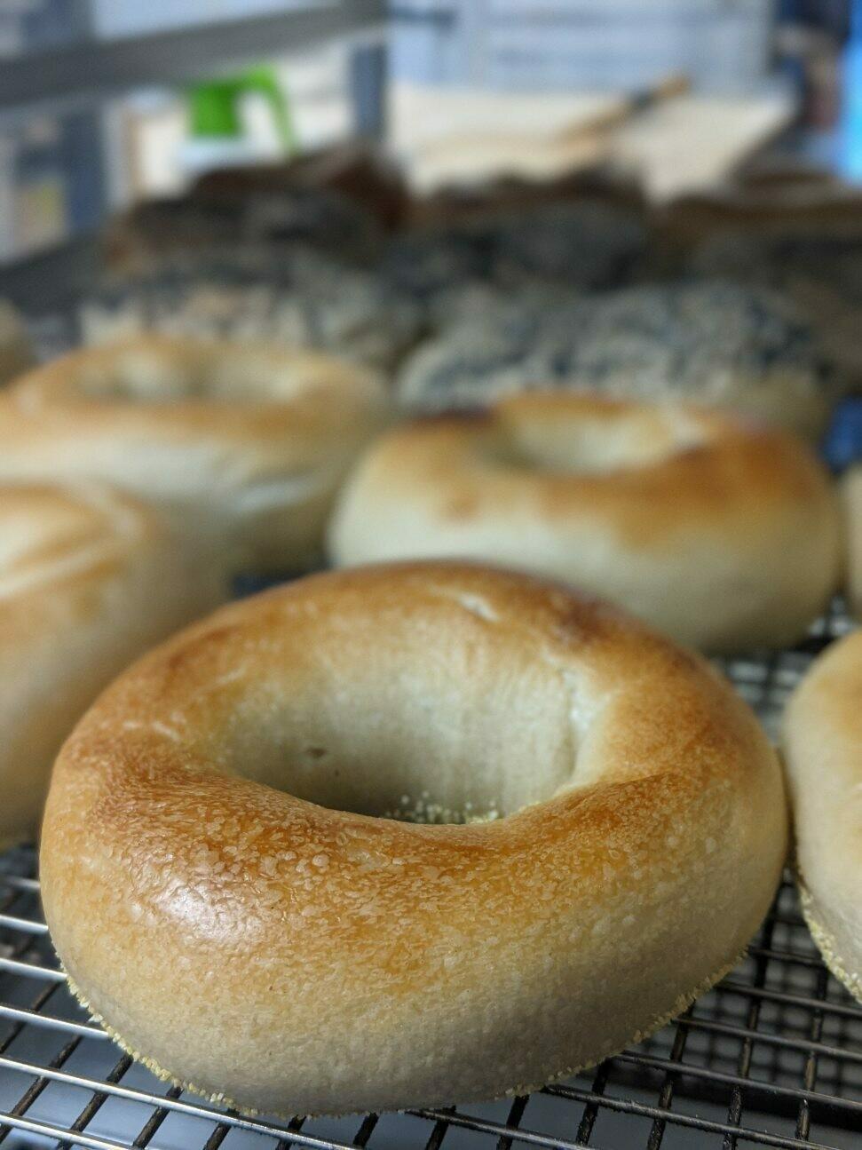 Sourdough Bagel, Saturday Feature