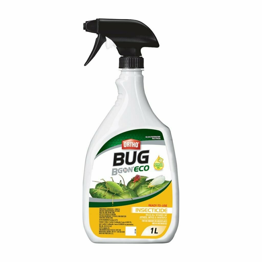 Bug B Gone Ready-to-Use Insecticide