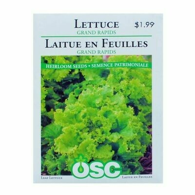Lettuce Grand Rapids Seed Package