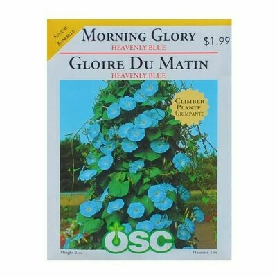 Morning Glory Heavenly Blue Seed Package