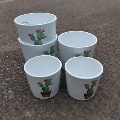 Cactus Garden Pot Cover