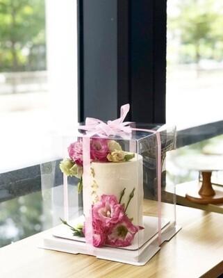 Transparent Box - Cake