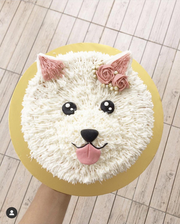 Dog Puppy Cake 3