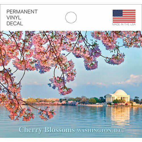 Cherry Blossom Vinyl Decal
