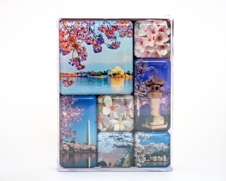 Cherry Blossoms Magnet Set 7 Pc.