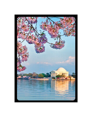 Cherry Blossom Playing Cards