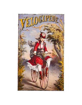 Velocipede Postcard