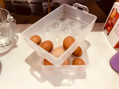 Egg Storage Container With Lid -24 Eggs