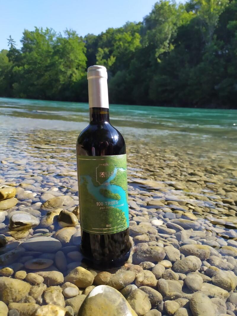 100 Bäume & ein BIO Rotwein (Italien)
