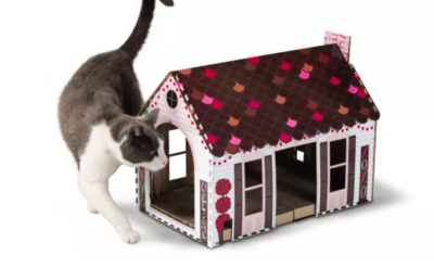 Cat Valentine's Day Playhouse and Goodies