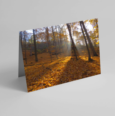 Set of 6 Folded Note Cards - Landscapes No. 1