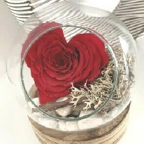Rose coeur stabilisée