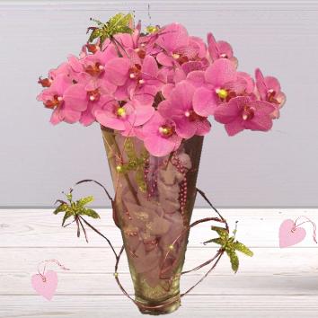 Orchidée en écrin de verre