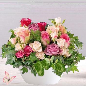Cocktail de roses