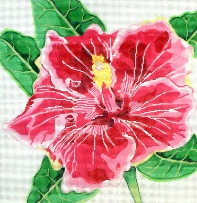 Flaming Hibiscus    (handpainted from Jean Smith)