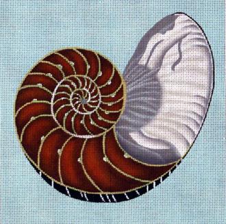 Cut Nautilus     (handpainted by Melissa Shirley)