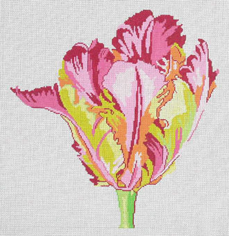 Regal Parrot Tulip       (handpainted by Jean Smith)