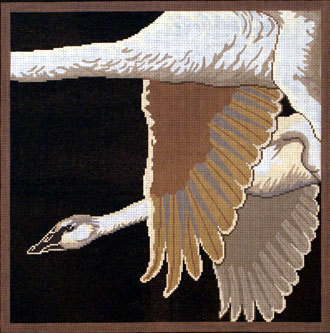 Trumpeter Swans on Black (Handpainted by Red Thread Designs)
