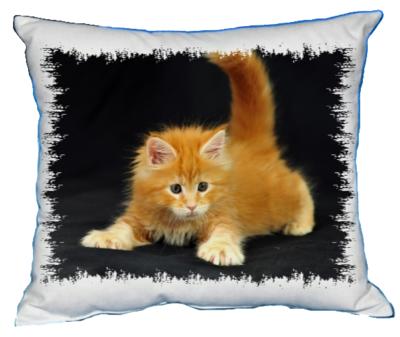 Polštářek Rezavé kotě