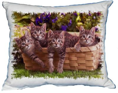 Polštářek Kočky v koši