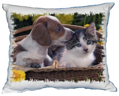 Polštářek Štěňátko a kotě I