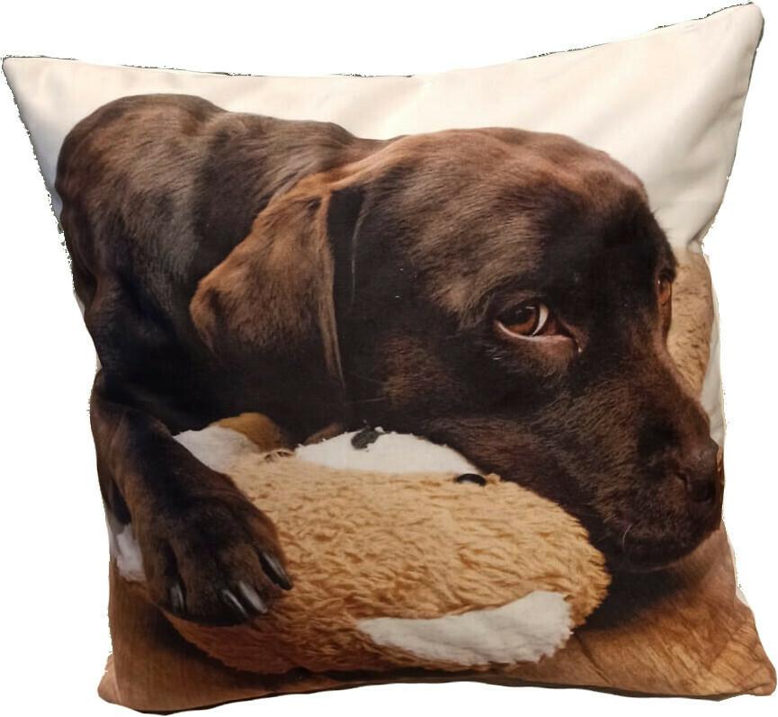 Povlak na polštářek Smutný pes