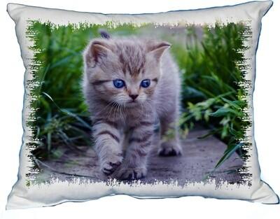 Polštářek Kotě Modroočko