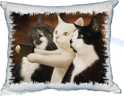 Polštářek Selfie Kočky