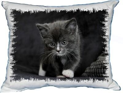 Polštářek Kotě černé