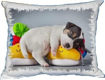 Polštářek roztomilé štěně