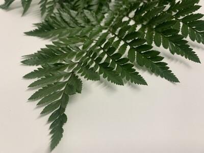 Bulk Leather Leaf