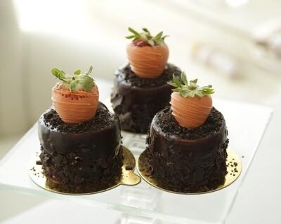 Chocolate Mousse Garden