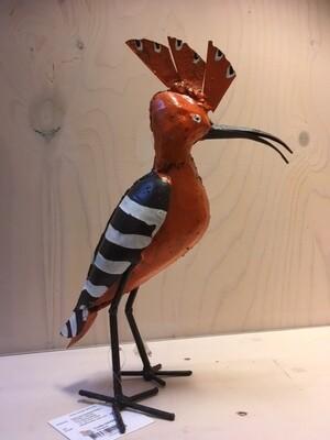 Hoopoe vogel