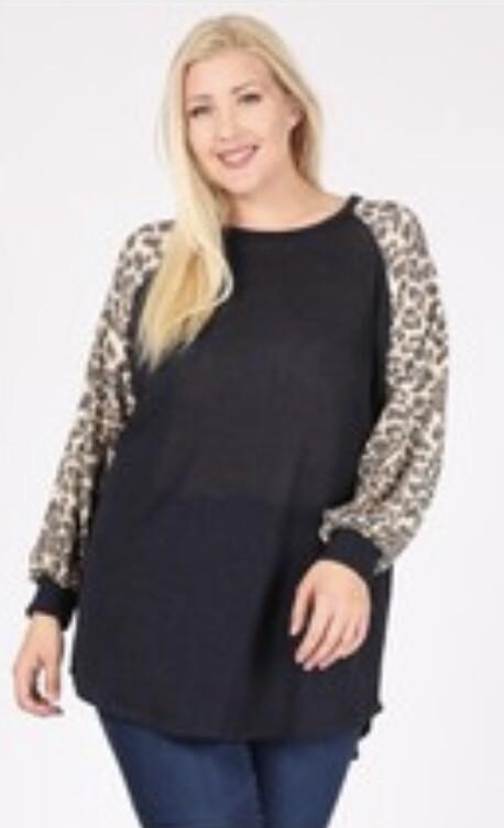 Leopard Contrast Top