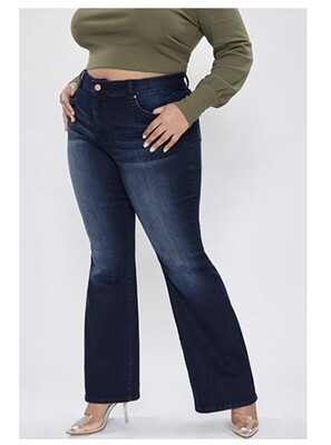 YMI Basic Flare Jeans