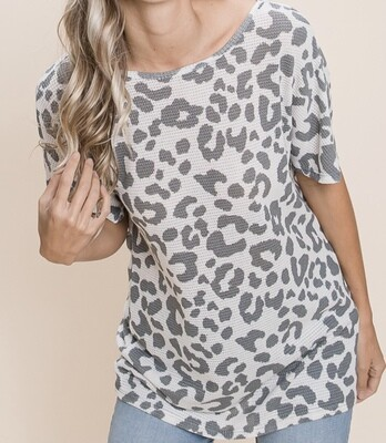 Gray Leopard Twist